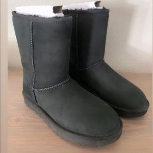 Short Black Classic Uggs